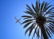 Ibiza VIP Concierge Services